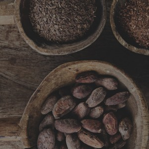 10 things you didn't know about cocoa