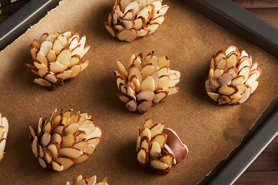 TURTLES Pine Cones Recipe. Perfect for the holidays.