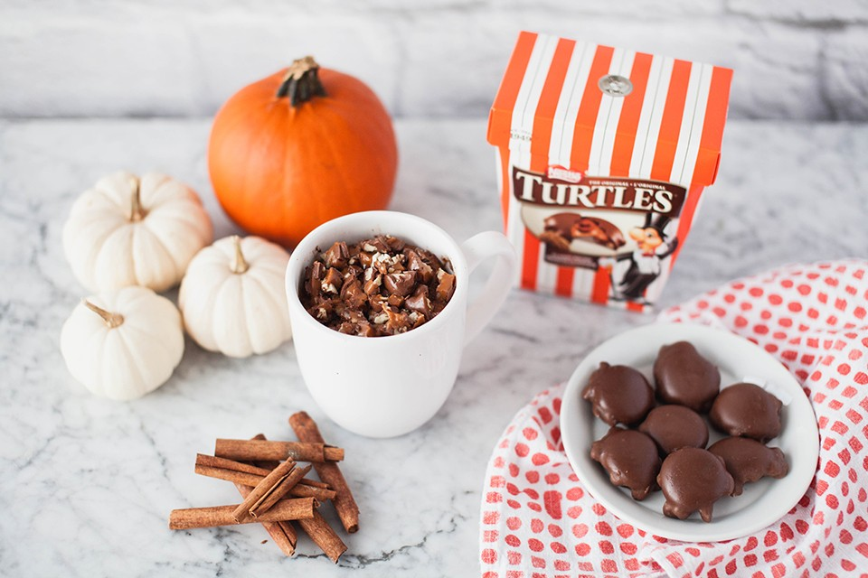 TURTLES Pumpkin Mug Cake Recipe. A TURTLES & pumpkin cake is here to make your dream come true.
